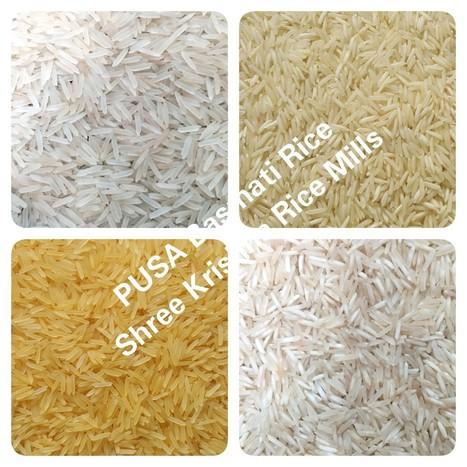 Pusa Basmati Rice Exporters, Manufacturers and