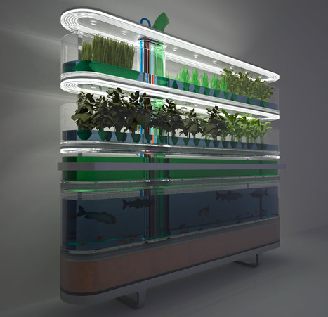Philips Biotower Puts Farming in the Kitchen (With Style) | Modern Filipino Architecture | Scoop.it