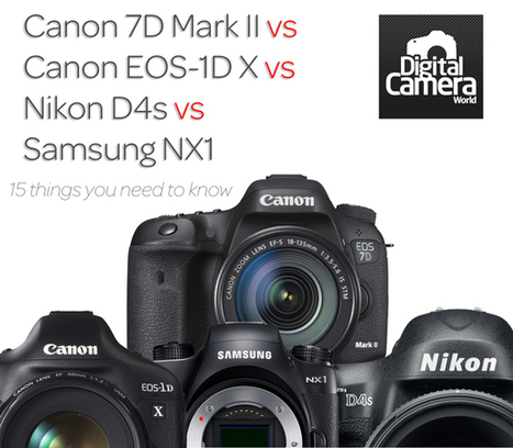 Canon 7D Mark II vs Canon EOS-1D X vs Nikon D4s vs Samsung NX1: 15 things you need to know | Digital Camera World | Everything Photographic | Scoop.it