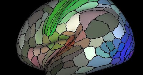 Une révolution scientifique : cette carte du cerveau humain est d'une précision incroyable | C'est Nouveau !!  Innovation & santé | Scoop.it