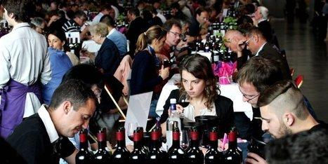 Le palmarès 2016 des vins d'Aquitaine : découvrez toutes les bouteilles médaillées | Oenotourisme en Entre-deux-Mers | Scoop.it