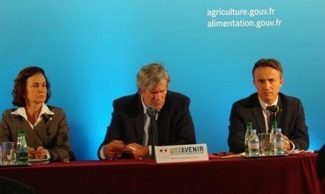 [Décryptage] Loi d'avenir agricole - L'essentiel du projet de Stéphane Le Foll pour l'agriculture française | Bio alimentation | Scoop.it