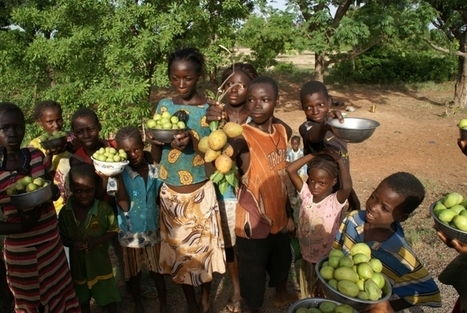 The great potential of Burkina Faso | Text to Change | E-Agriculture | Scoop.it