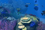 Celebrate World Oceans Day as a Virtual Fish - TIME | Virtual Worlds and Online Education | Scoop.it