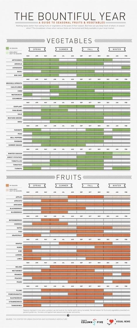 What to eat, when to eat it   For the Love of Infographics   Scoop.it