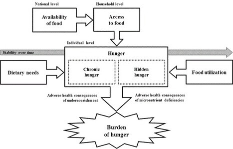 Rethinking the Measurement of Undernutrition in a Broader Health Context: Should We Look at Possible Causes or Actual Effects? - Stein (2014) - Global Food Security | Food Policy | Scoop.it