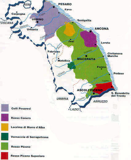 Wines Of Le Marche Central Italy A Brief Ove
