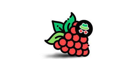 Raspberry Pi, Page 234   Scoop it