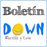Boletín - Federación Síndrome de Down de Castilla y Léon