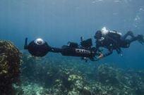 Catlin Seaview Survey Digitizes the Endangered Oceans | Belize in Social Media | Scoop.it
