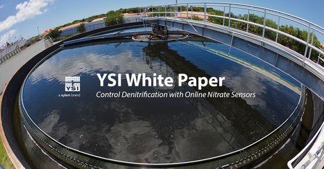 How To Control Denitrification Using Online Nitrate Sensors - White Paper | Wastewater | Scoop.it