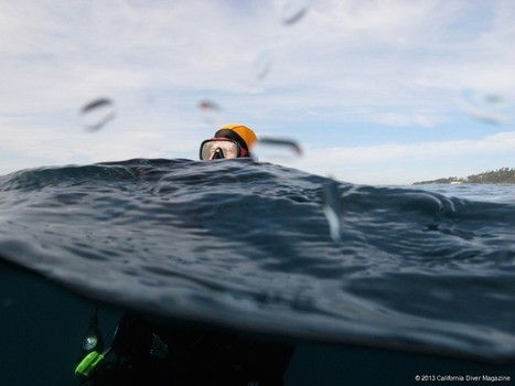 Lessons Learned: How Deep is Too Deep? The Dive that Changed Everything… | Scuba diving and skin diving California and beyond | All about water, the oceans, environmental issues | Scoop.it