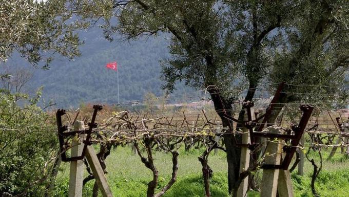 La Turquie, cette puissance agricole à la recherche d'un modèle environnemental - Europe