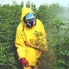 About pesticides