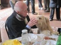 Pet therapy in Casa Vidas | Noi di Vidas | PaginaUno - Green Affair | Scoop.it