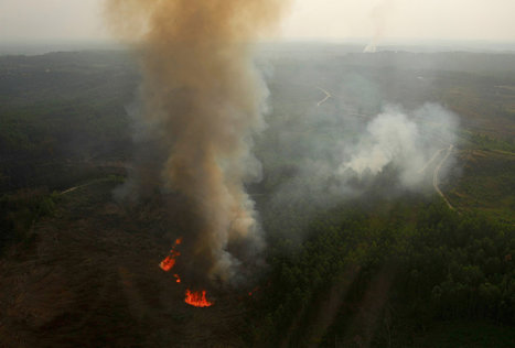 Tight Lips Over Who Started Fires in Sumatra | Sustain Our Earth | Scoop.it