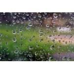 [Dossier] Récupération des eaux de pluie | Communiqu'Ethique sur l'idée selon laquelle changer le monde commence par se changer soi-même | Scoop.it