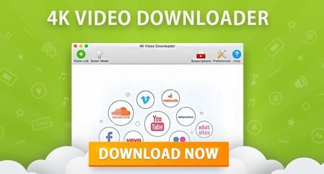 windows toolkit download google drive