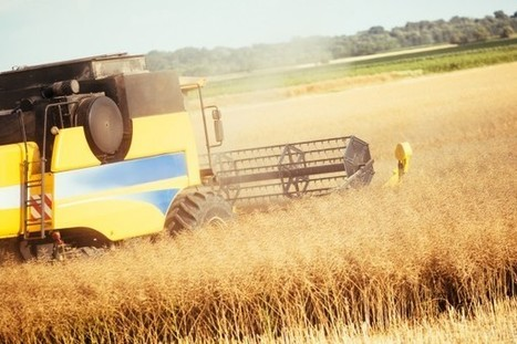 La agricultura ecológica gana terreno en España | APETECEECOLÓGICO | Scoop.it