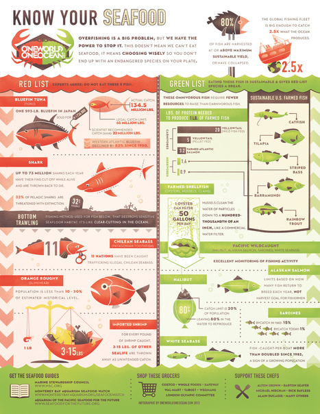 What You Eat Affects Our Oceans | All about water, the oceans, environmental issues | Scoop.it