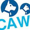 CAWI Website