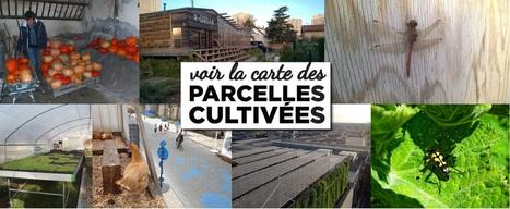 Agriculture urbaine IDF | Agriculture urbaine, architecture et urbanisme durable | Scoop.it