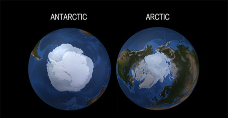 What's the deal with Antarctica and the Arctic? | Our Physical World | Scoop.it