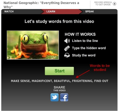Build your English Vocabulary - Environment | EnglishCentral World Report | Scoop.it