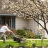 Roof Maintenance Tips