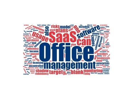 Many Spend Management Saas Softwares Ava