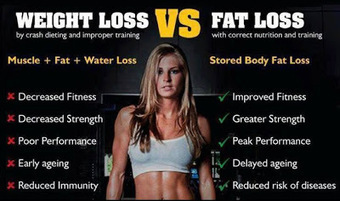 This Summer's Must! Lose Fat without Losing Muscle | Useful Fitness Articles | Scoop.it