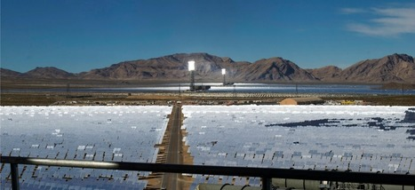 La plus grande centrale d'énergie solaire du monde grille les oiseaux en plein air | Les énergies renouvelables en Suisse | Scoop.it