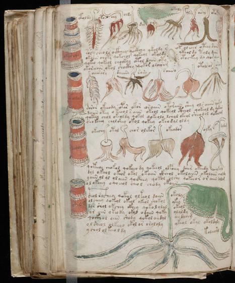Il existe un livre vieux de 600 ans écrit dans un langage qui n'a toujours pas été déchiffré. | Per linguam | Scoop.it