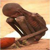 Fight Against Famine: 1eurocontrelafaim Operation's Facebook Page | PR Newswire | Actualités Afrique | Scoop.it