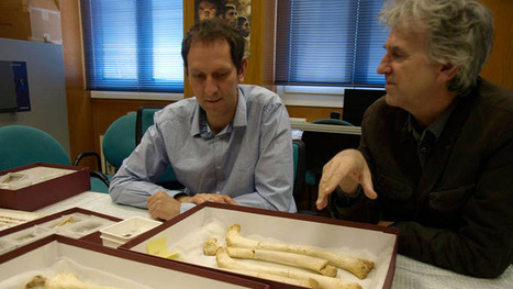 Hallan en Atapuerca el ADN humano más antiguo, de unos 400.000 ... - RTVE   historian: science and earth   Scoop.it