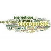 Audit énergétique : tous les lots de copropriété comptent pour le déclenchement de l'obligation - Droit immobilier   inforenovateur.com   Scoop.it