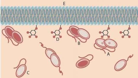 Syndrome de bannayan-riley-ruvalcaba syndrome dating