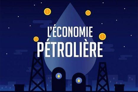 Infographie : pourquoi il est urgent de sortir le pétrole de notre économie | décroissance | Scoop.it