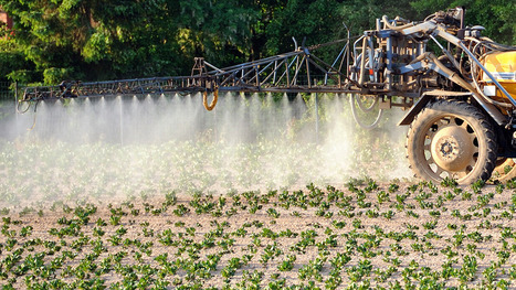 Lien prouvé entre pesticides et infertilité: le Dr Halimi donne des conseils | Développement durable en France | Scoop.it