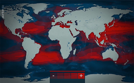 9408c923e32628 Le Dessous des cartes   Sauver les océans - ARTE