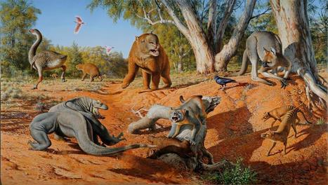 Humans, not climate change, wiped out ancient megafauna | Amazing Science | Scoop.it