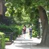 Design of Walkable Communities