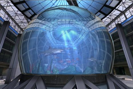 WebGL Aquarium | Amazing HTML5 | Scoop.it