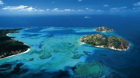 Research Shows Great Barrier Reef Coral Is Failing | conservation & antipoaching | Scoop.it