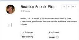 Social Rank. Detecter vos meilleurs followers sur Twitter - Les outils de la veille | François MAGNAN  Formateur Consultant | Scoop.it