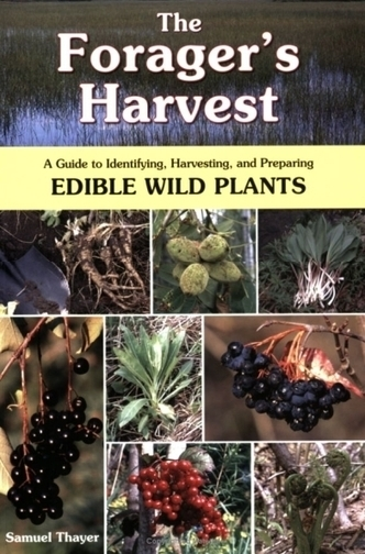 Homestead Survival: The Forager's Harvest: A Guide to Identifying, Harvesting, and Preparing Edible Wild Plants Book | Alysha Mae | Scoop.it