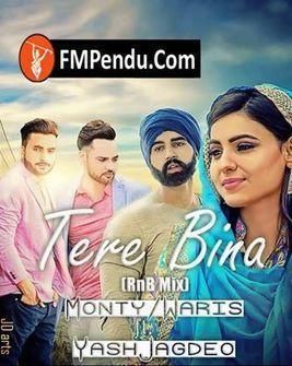 tere bina song download mp3 djpunjab