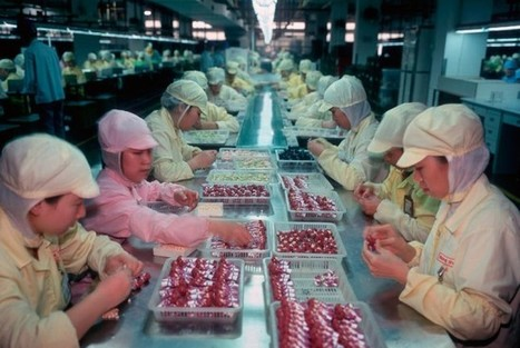 Chinese Factory Workers Who Make Toys « Michael Wolf   Camera Arts   Scoop.it