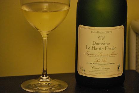 J'aime boire du vin: La Haute Févrie, Muscadet Sèvre et Maine sur Lie Excellence 2009   Vins de Loire   Scoop.it