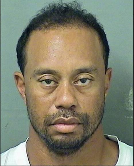 Ei Tiger Woods on iso penis